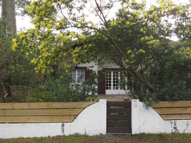 villa grand terrain arborée clôturée et fleuris