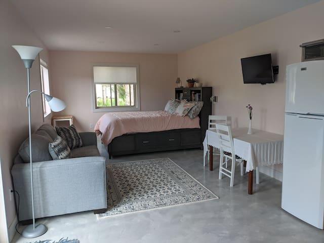 Living area/dining area/bedroom