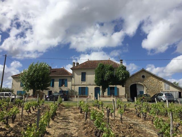 Chambre dans le vignoble bordelais