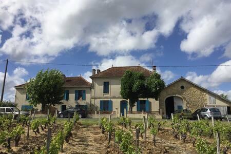 Loft au cœur du vignoble bordelais