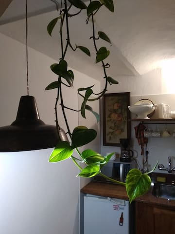 Free WIFI  Complete ParqueRodó Apartament