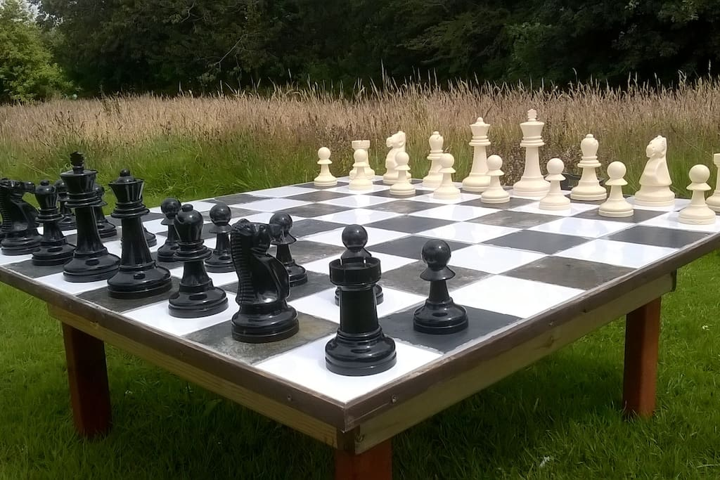 Outdoor chess in the meadow
