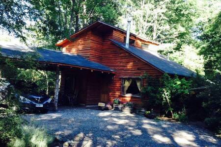 modern cabin inside native forest - Pucón