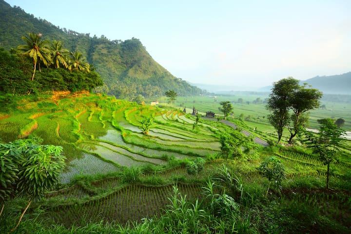 Guide français Bali