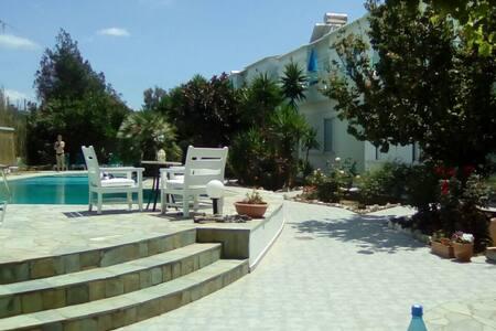 Seashell apartments for rent - Pirgos Psilonerou