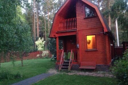 Уютный дом рядом с Санкт-Петербургом - Bolshaya Izhora