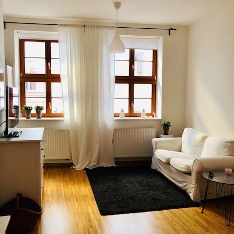 Kuscheliges 1 Zimmer Apartment im Barockviertel