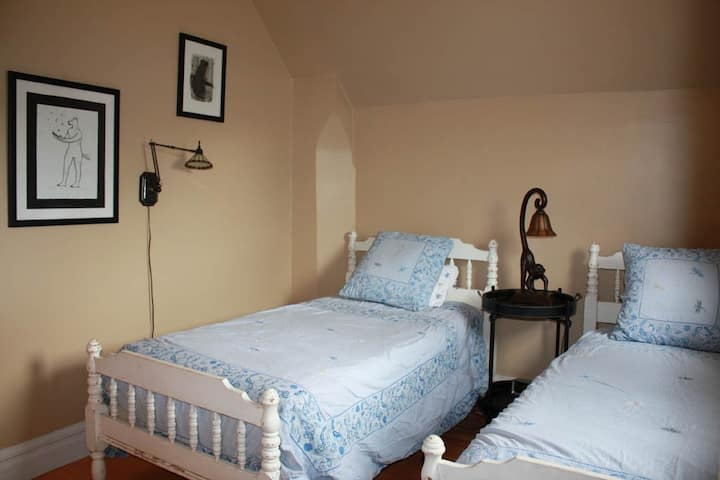 Twin Bed Charmer Perfect for Two Friends