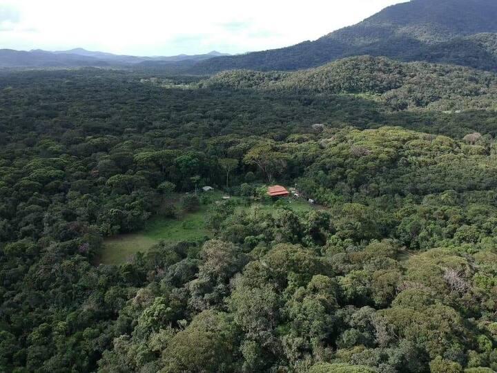 Refugio na floresta Tubuna