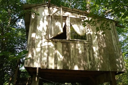 A TREEHOUSE! Adventure! Support Organic Farming!