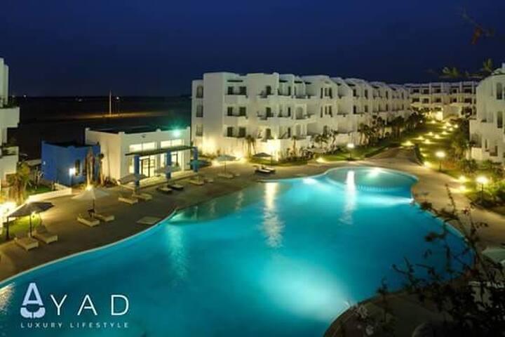 Appartement calme au bord de la mer avec piscine