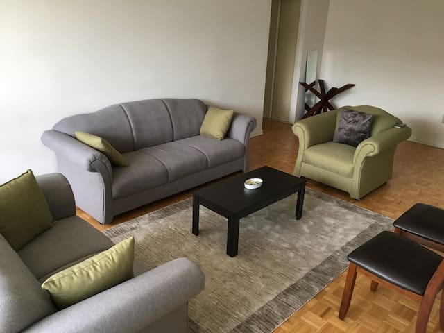 Master Bedroom near York University - Toronto - Apartamento