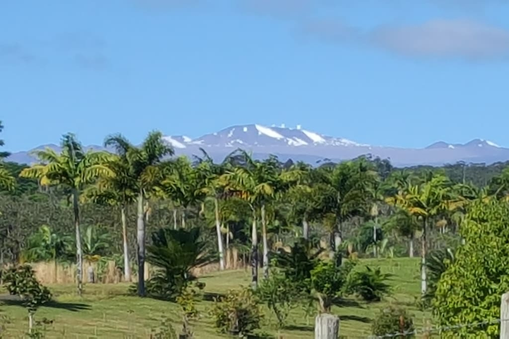 View of Mauna Kea as a backdrop to Buddha's Cup Retreat