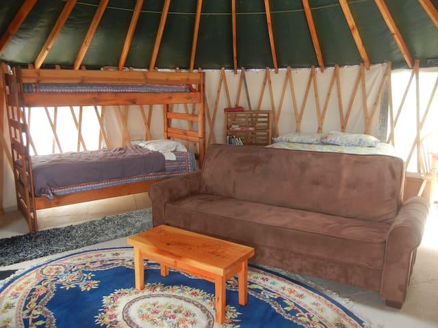 Buckcamp Yurt