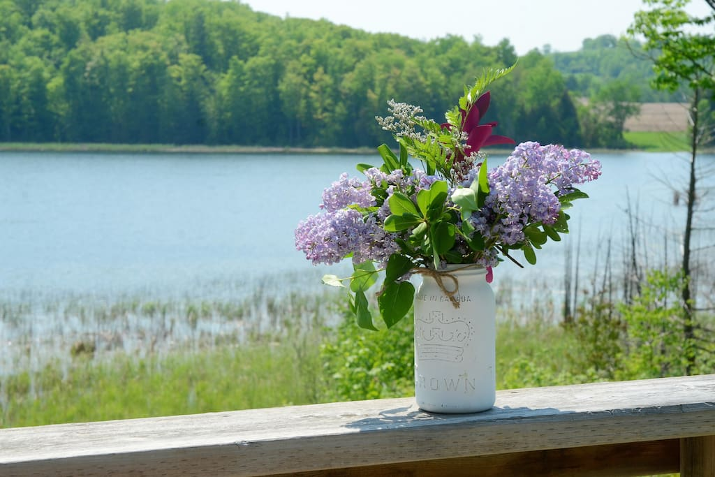 Flower Picking at the Lake