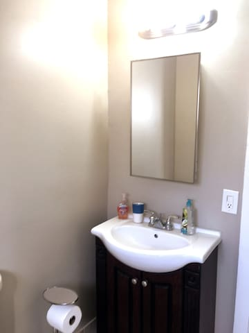 Hall bathroom sink, mirror and medicine cabinet