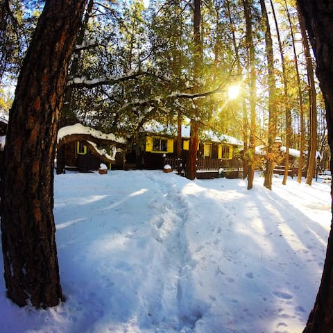 East Verde River Cabin for Rent - Payson - Cabane