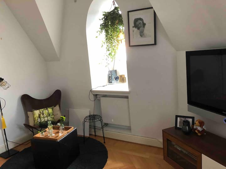 1 bedroom with huge  living room and dinner area