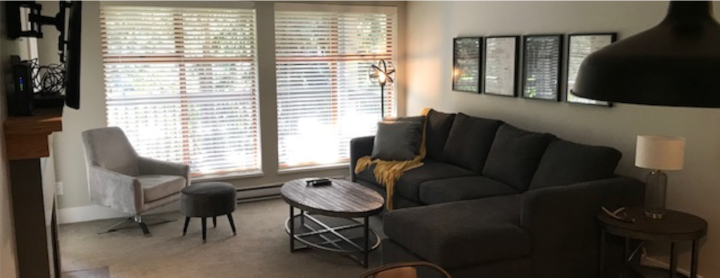 Renovated 1 Bedroom Apartment Located in Whistler