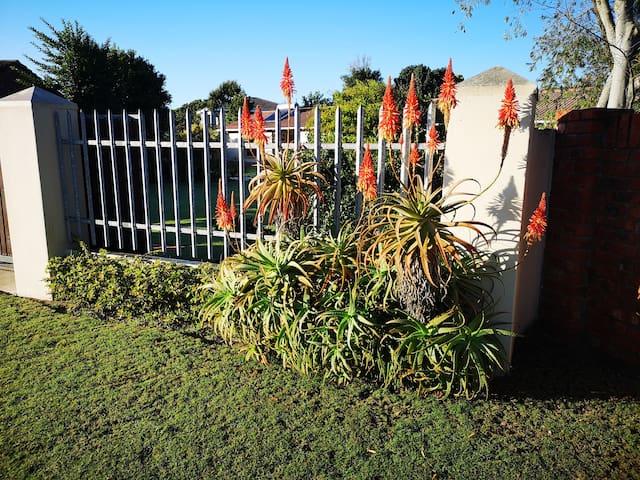 Pet-friendly, private, quiet space; Port Elizabeth