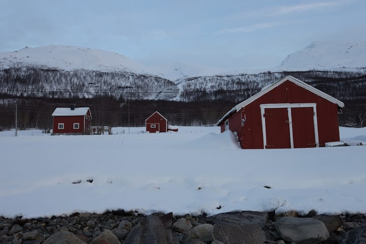 Basecamp Djupvik - Accommodation and Experiences