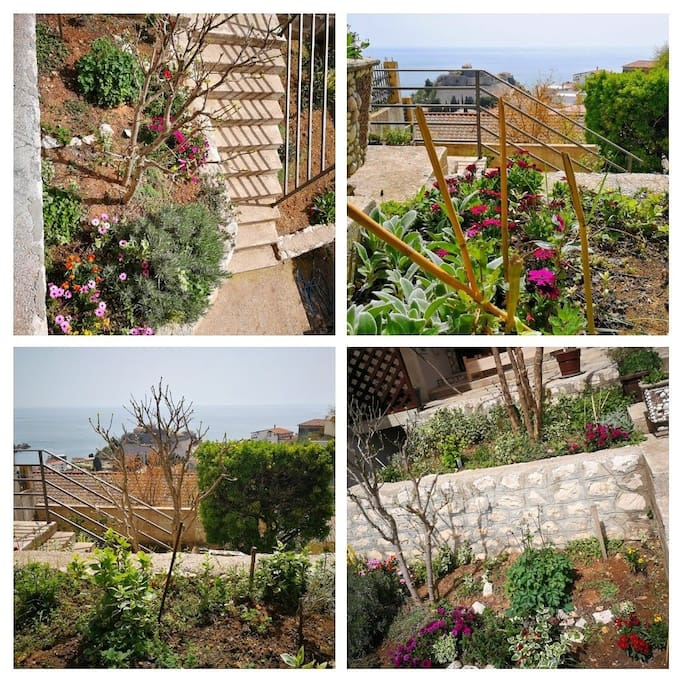 Our garden and view to old town