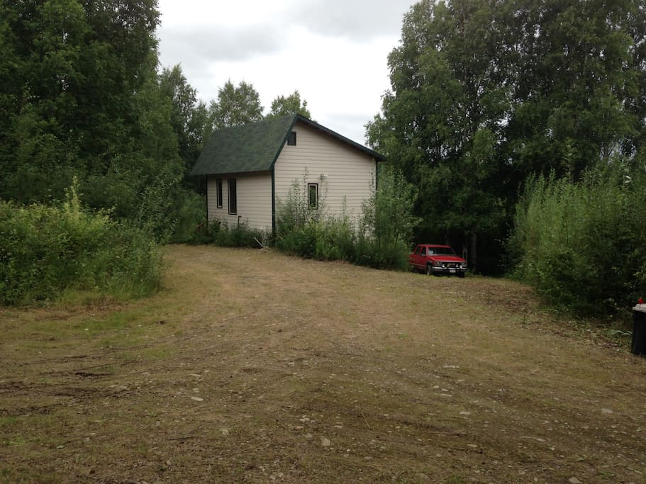 House and yard in summer