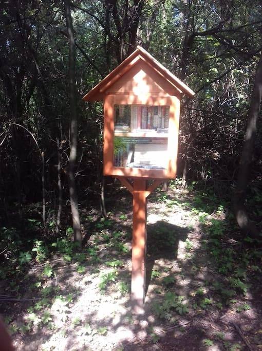 Mini library in the forest