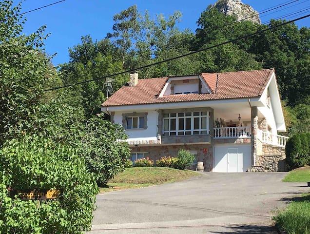 Casa entera La Veguina, barbacoa,Picos de Europa