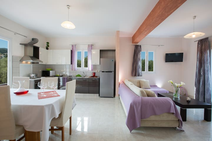 Santa Maria Luxury Apartments - Lefkada - Apartment
