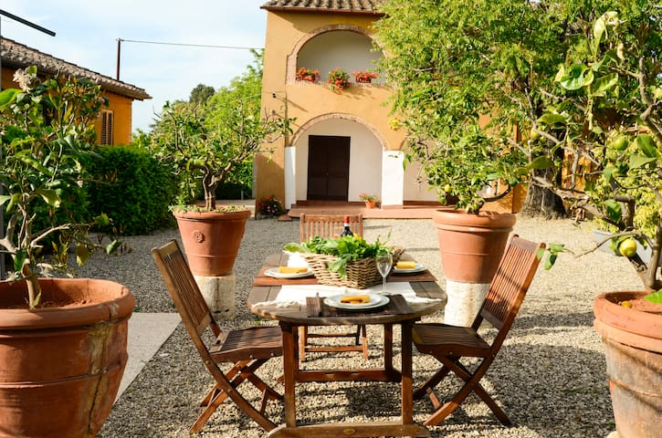 Villa with Siena view swimming pool - Siena - Villa