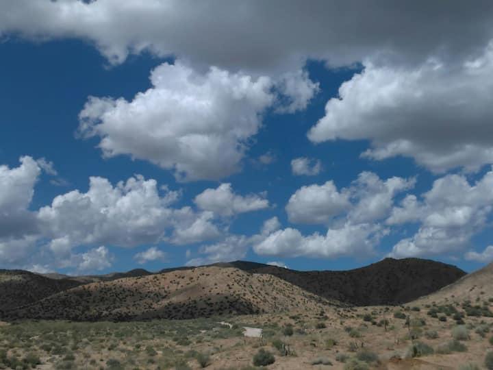 Volar'e Ranch * Coyote Pass