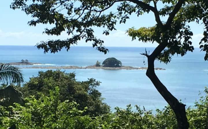 Ocean View, Pool, With Monkeys & Birds Galore