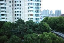 阳台看出去的景色2