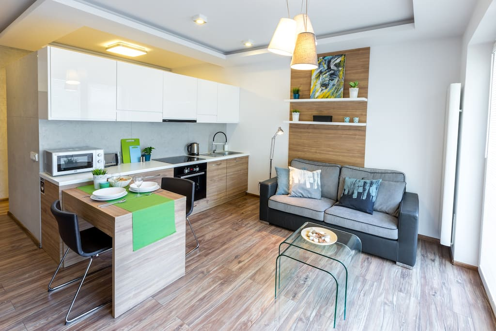 Fully Equipped Kitchen - Microwave , toster, dishwasher
