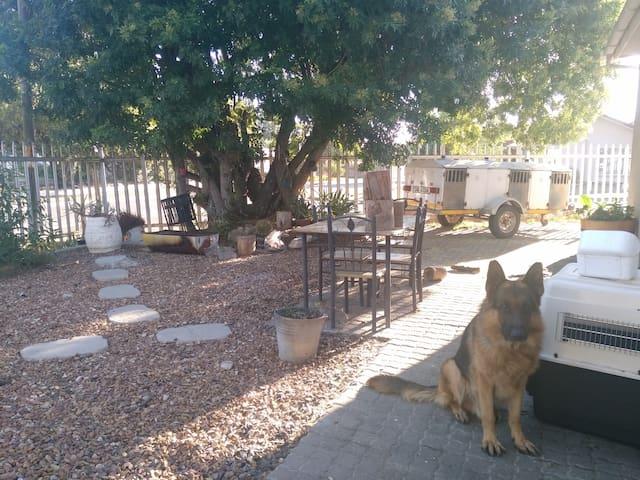 Spacious & pet friendly apartment - Cidade do Cabo - Apartamento