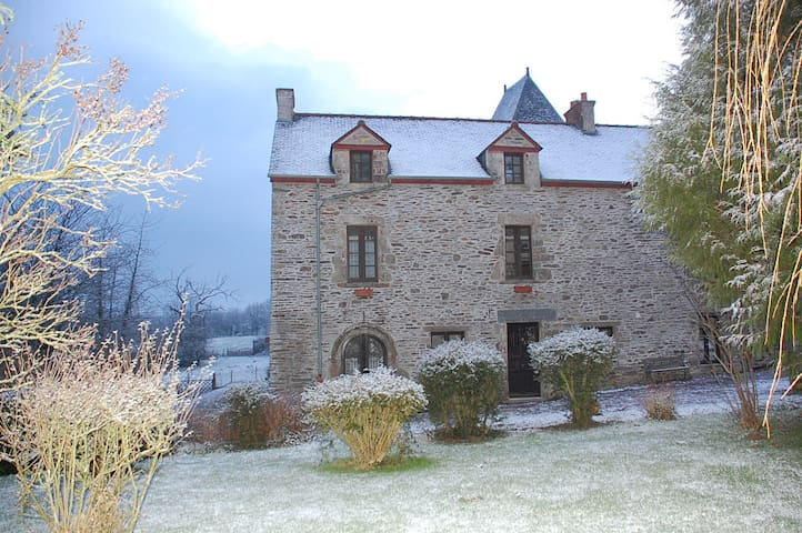 A Very Rare Snowfall at Le Mur!