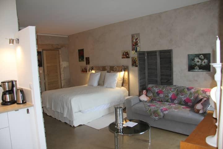 Gîte Luberon Mas provençal piscine proche Avignon