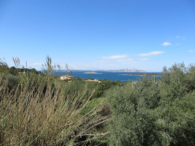 Flat with sea view in  Costa Smeralda