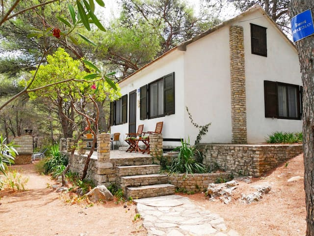Holiday House Neli for 6 persons in Isle of Solta