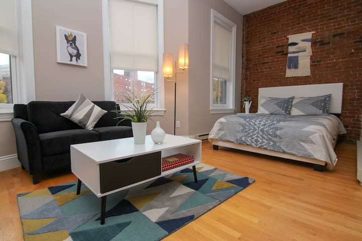 Spacious South End Studio w/Boston View #7