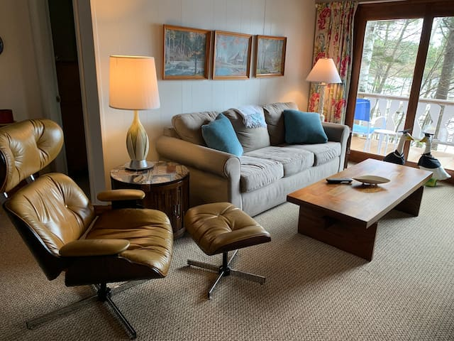 Eames Chair with Queen Pullout couch for comfy TV watching.