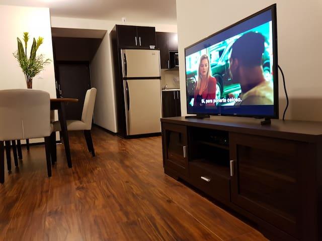 Penthouse level apartment zona 9 Airport 4km away