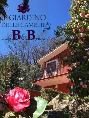 Il giardino delle camelie B&B