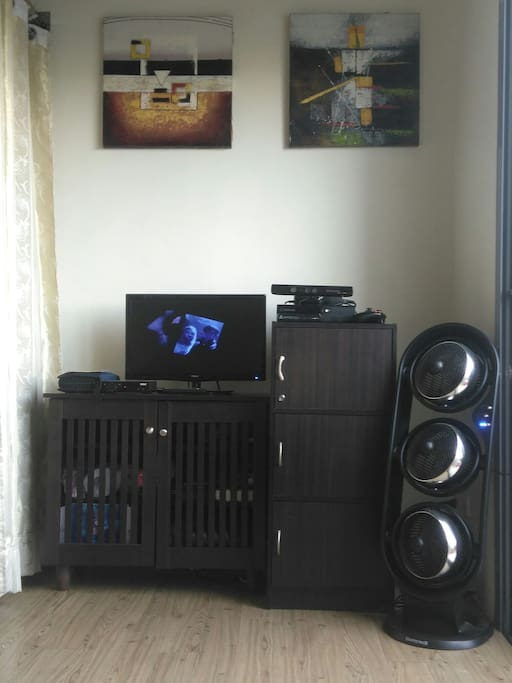 TV at living area