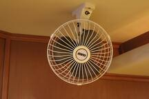 Personal Fans in Staterooms.