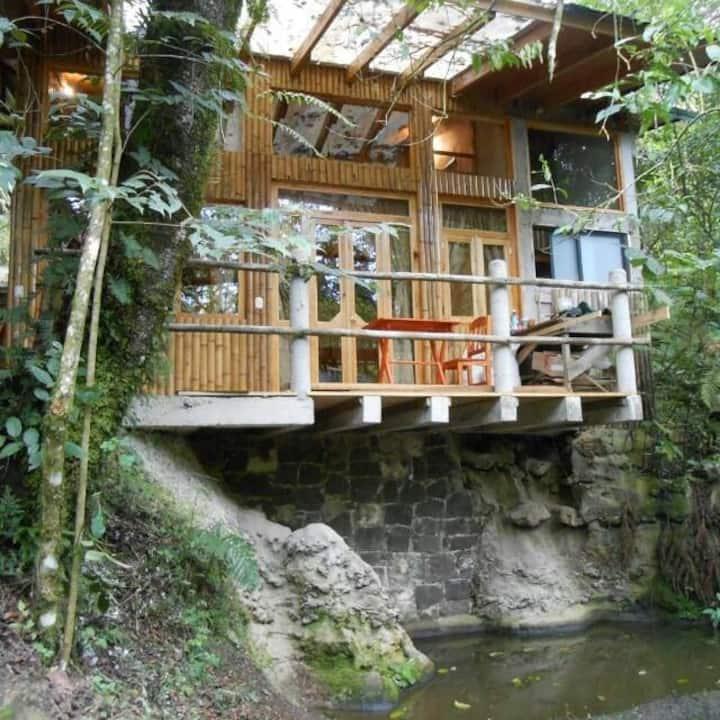 Cabaña en cuetzalan en medio del bosque