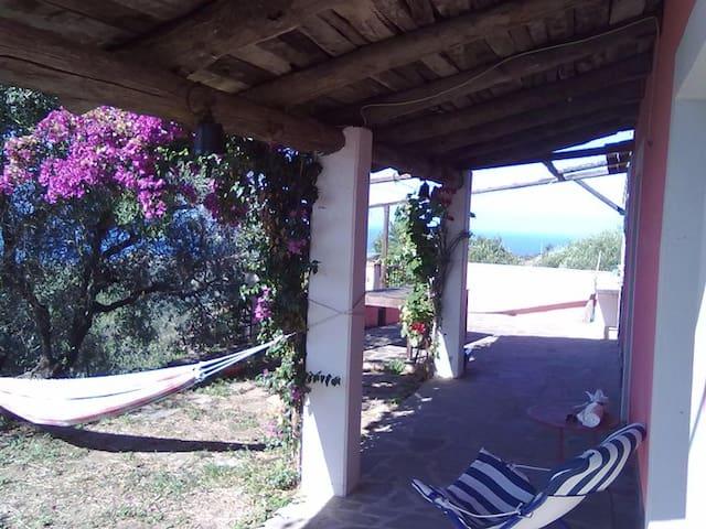 Casale panoramico sul mare ed ulivi - Pollica - Hus