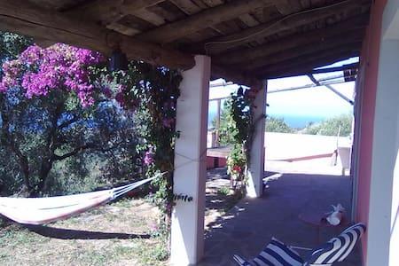 Casale panoramico sul mare ed ulivi - Pollica