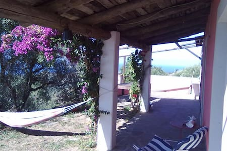 Casale panoramico sul mare ed ulivi - Pollica - Rumah